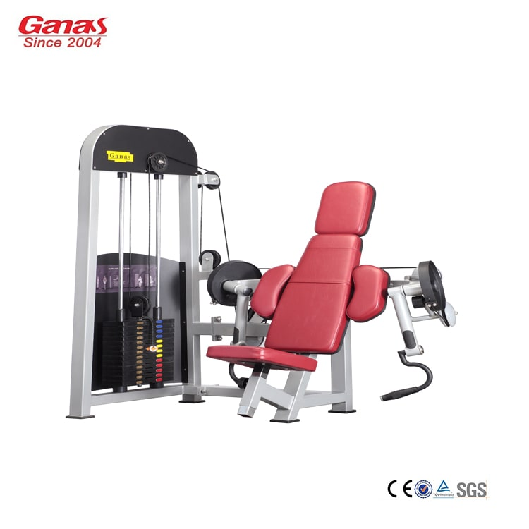 Seated Biceps Curl MT-6013