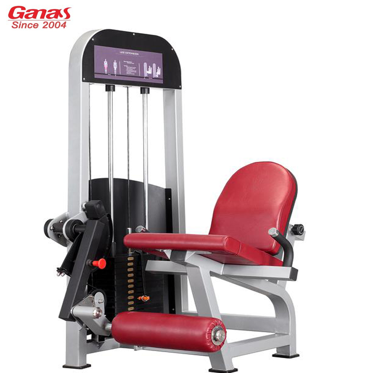 Commercial Exercise Equipment Brands: Seated Leg Extension MT-6019-China Commercial Gym