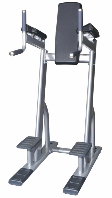 vertical knee raise chin dip machine