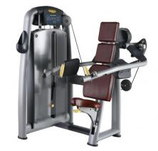 Luxury commercial delt machine